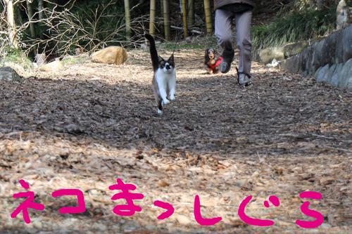 IMG_7946.jpg